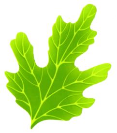 人工葉 人工の菊 人工の葉 ポリエチレン 人工菊