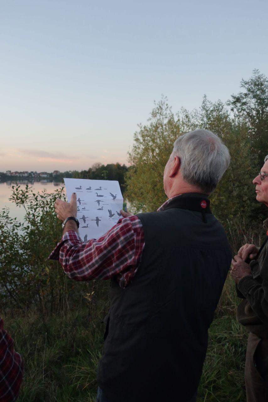 Gerd Andres erklärt die Wasservögel