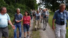 Die Gruppe erkundet das Tauberbischofsheimer Schmetterlings Revier Bachleiten