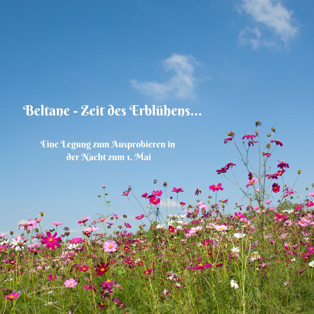 Beltane - Zeit des Erblühens...