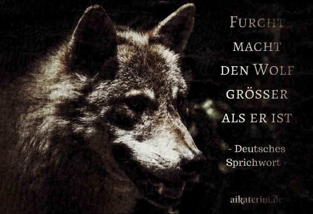 Einsamer Wolf Spruch