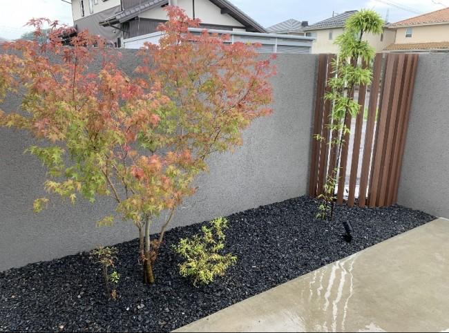 植栽も紅葉や黒竹で和のテイストを表現