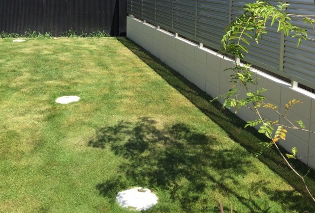芝を敷き詰めた庭