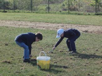 Zu Beginn sammelten wir Grasschnitt, ....