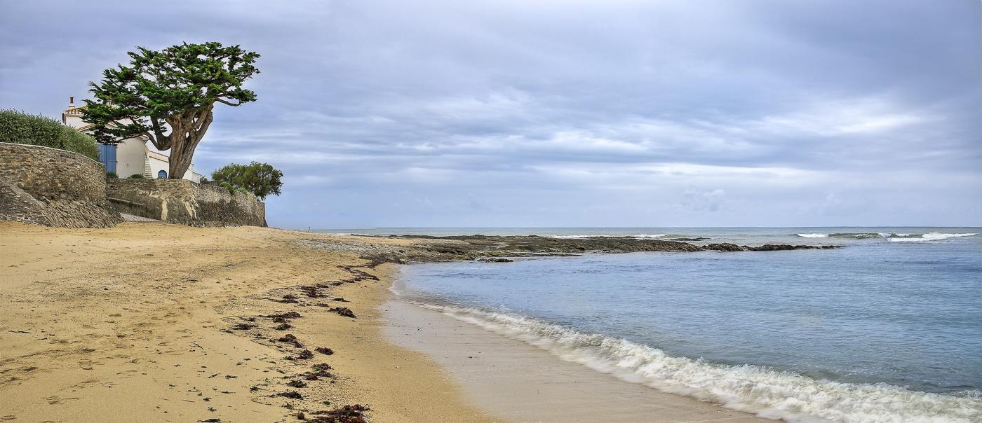 Presqu'île de Noirmoutier - panoramique HDR - tirage 310mm X 860mm pleine feuille ou 200mm X 575mm avec marges - 130€ réf: payspan-010