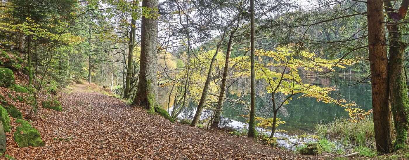 Vosges Lac de la Maix - panoramique HDR - tirage 290mm X 860mm pleine feuille ou 180mm X 575mm avec marges - 130€ réf: payspan-007