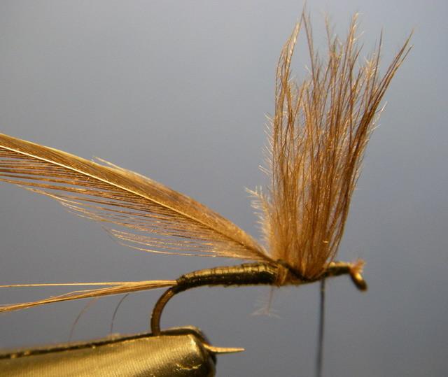 Enrouler le cul de canard en remontant les fibres pour former l'aile.