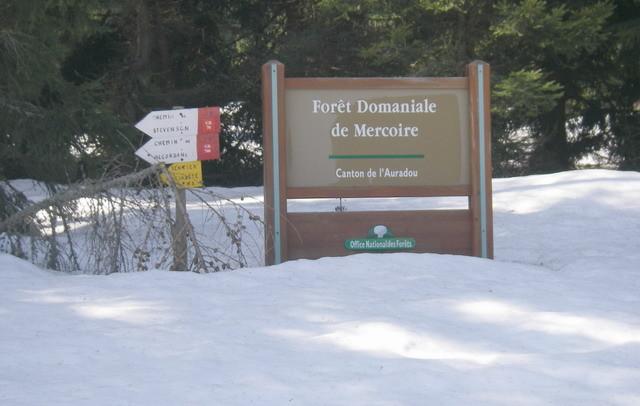 L'Auradou fait partie de la forêt de Mercoire...