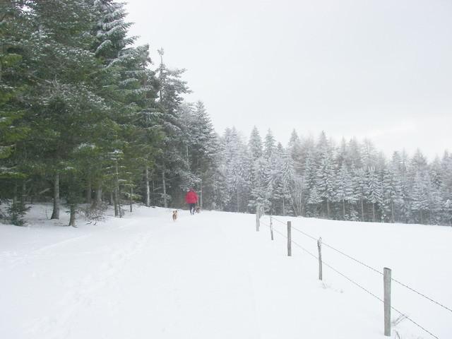 Le chemin est bien blanc.