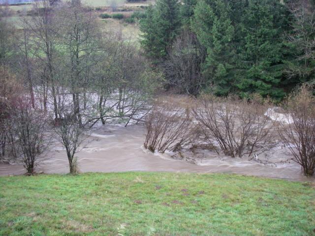 Confluence Allier ruisseau de Serres
