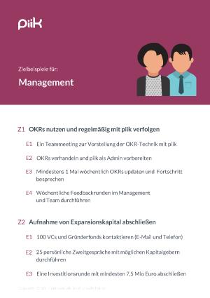 Beispiel für OKR Ziele - Management (piik.com)