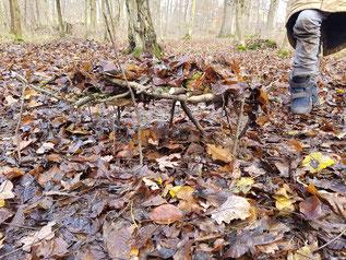Foto: Landart im Wald, W. Rathgeb