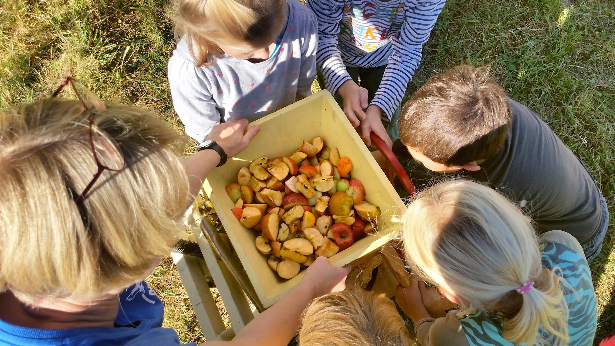 Apfelsaft pressen, Foto: U. Schnelle