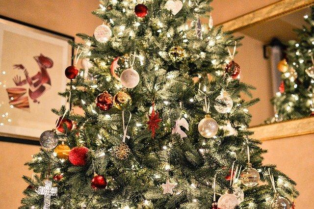 Veel gestelde vragen over de Kerstboom