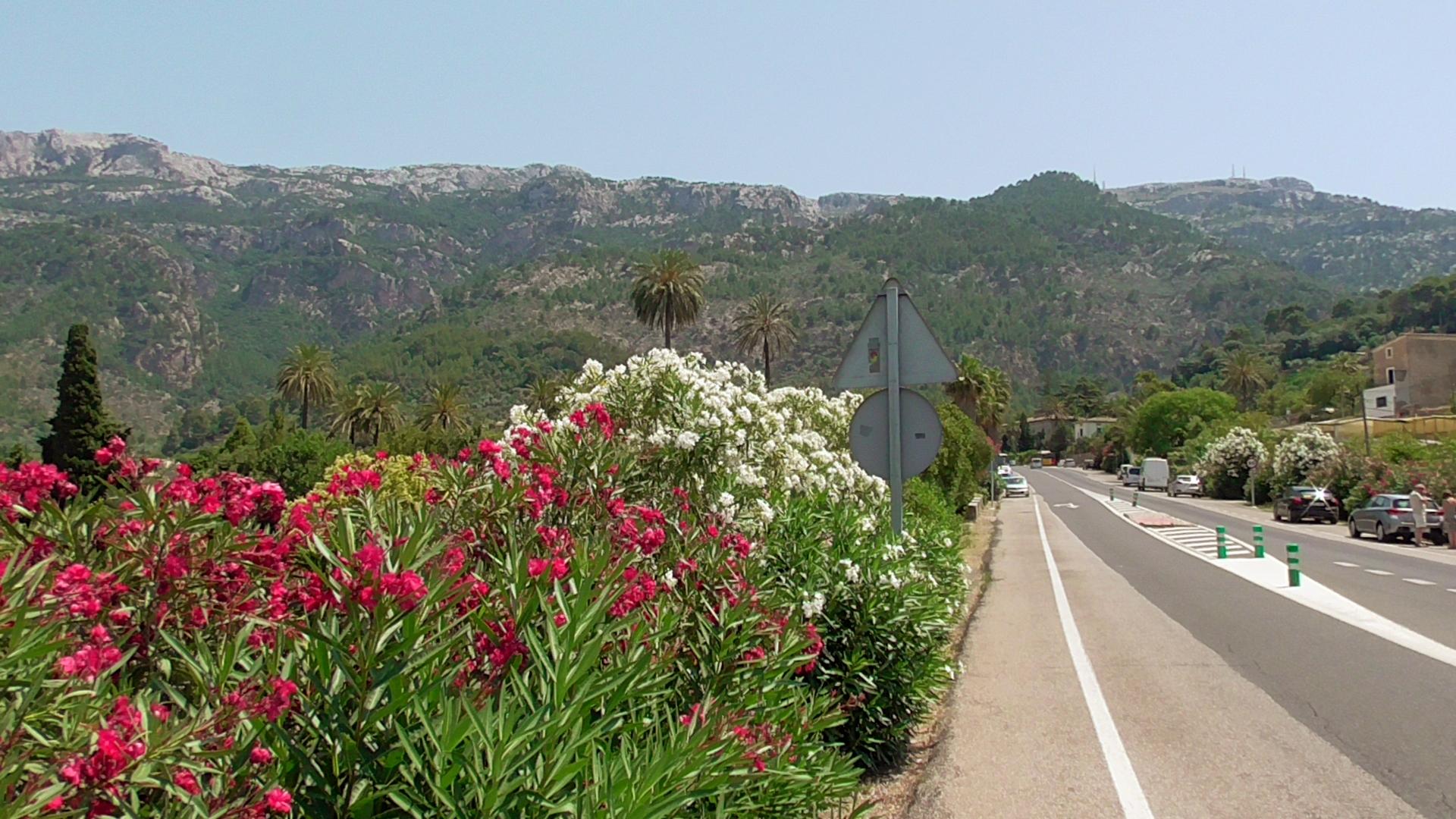 Fahrt nach Soller, einem Bergdorf auf Mallorca