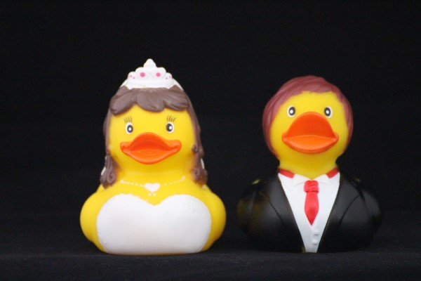 Bruid en bruidegom eend