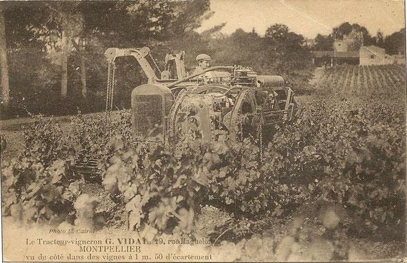 Carte postale rare vue de côté d'un tracteur Georges Vidal dans les vignes à 1m50 d'écartement ...