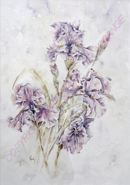 """"""" Iris violets """"    44 x 54"""