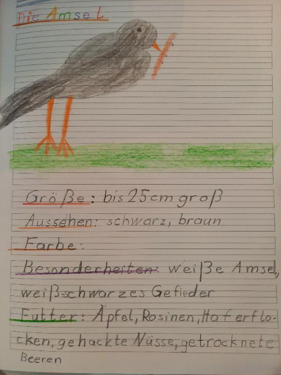 Amsel, Lars/Fiona 1/2c