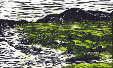 Michelle Boucard . linogravure - Vagues et rochers