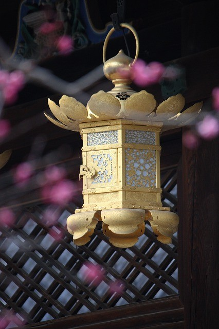 「 天 満 宮 」  京都・北野神社    藤田良武