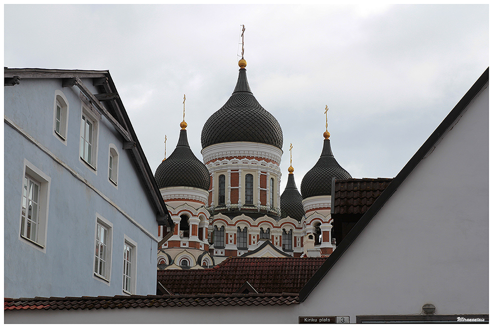 Vieille ville de Tallin - Estonie - Catégorie Paysages urbain et nature