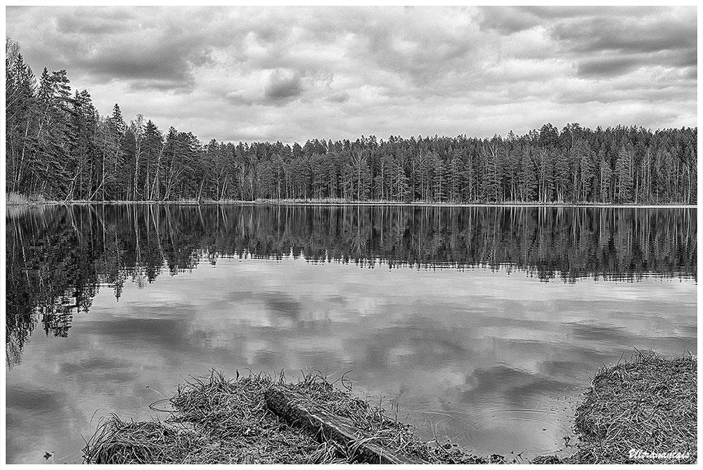 Parc national de Nuuksio - Finlande - Catégorie Noir et Blanc