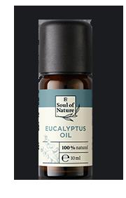 EUKALYPTUS-ÖL Der klare Duft wirkt motivierend und vitalisierend.