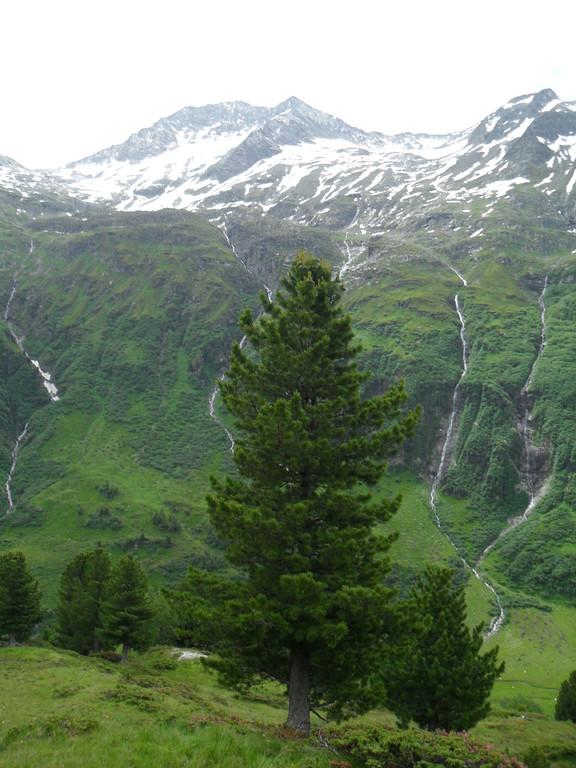 Am Ochsnerwaldweg (Foto: Rainer Pollack)