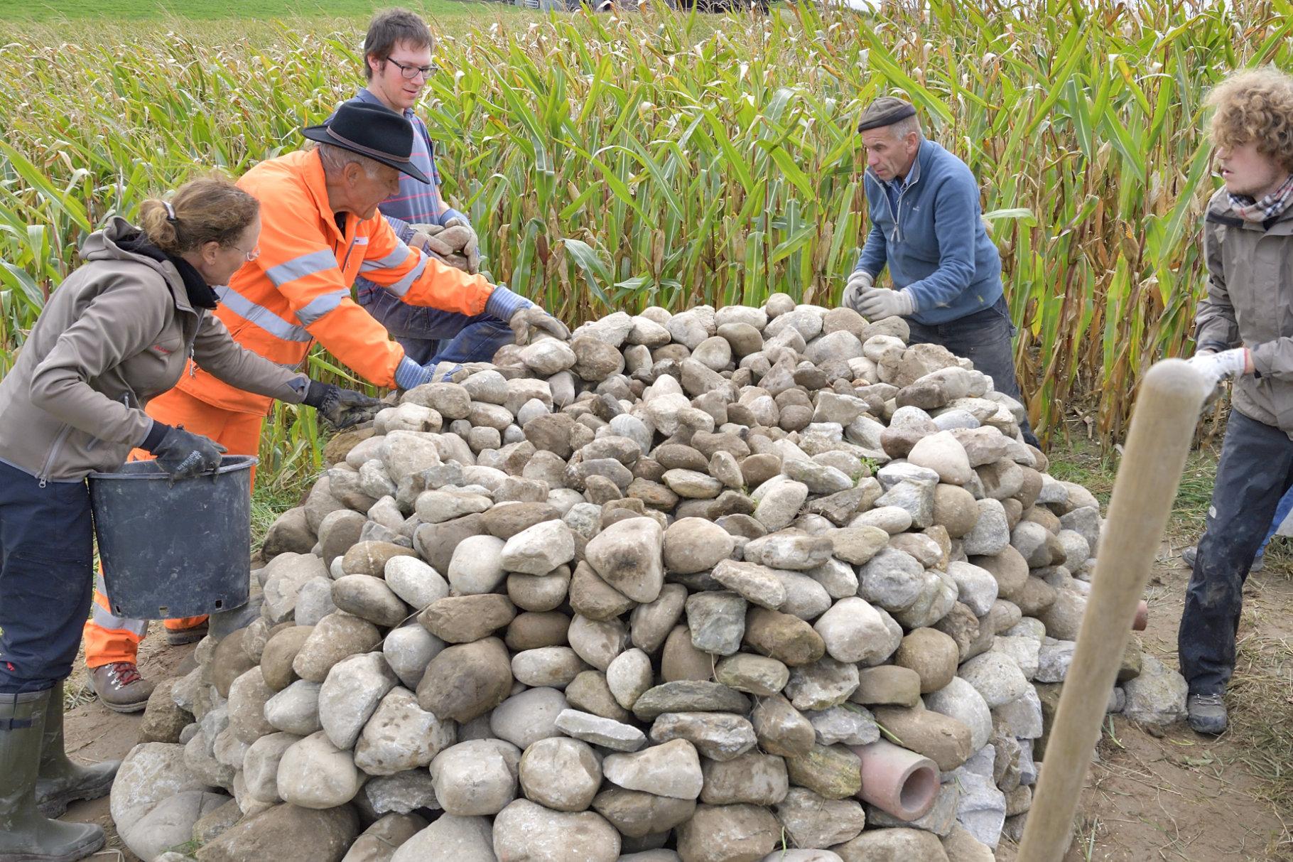 Aufbau mit grossen und kleinen Steinen