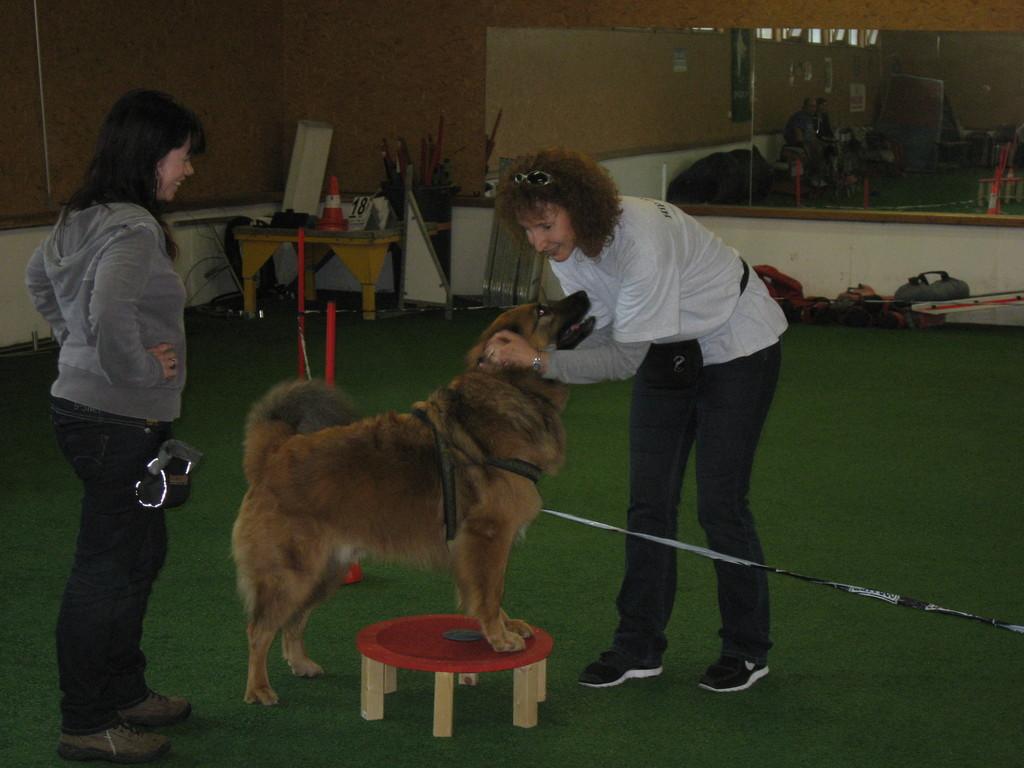 Sabine und Lenny mit Mica im Longierkreis
