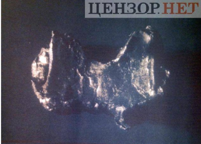 Butterfly-shaped particle from the body of the pilot as publshed by censor.net.