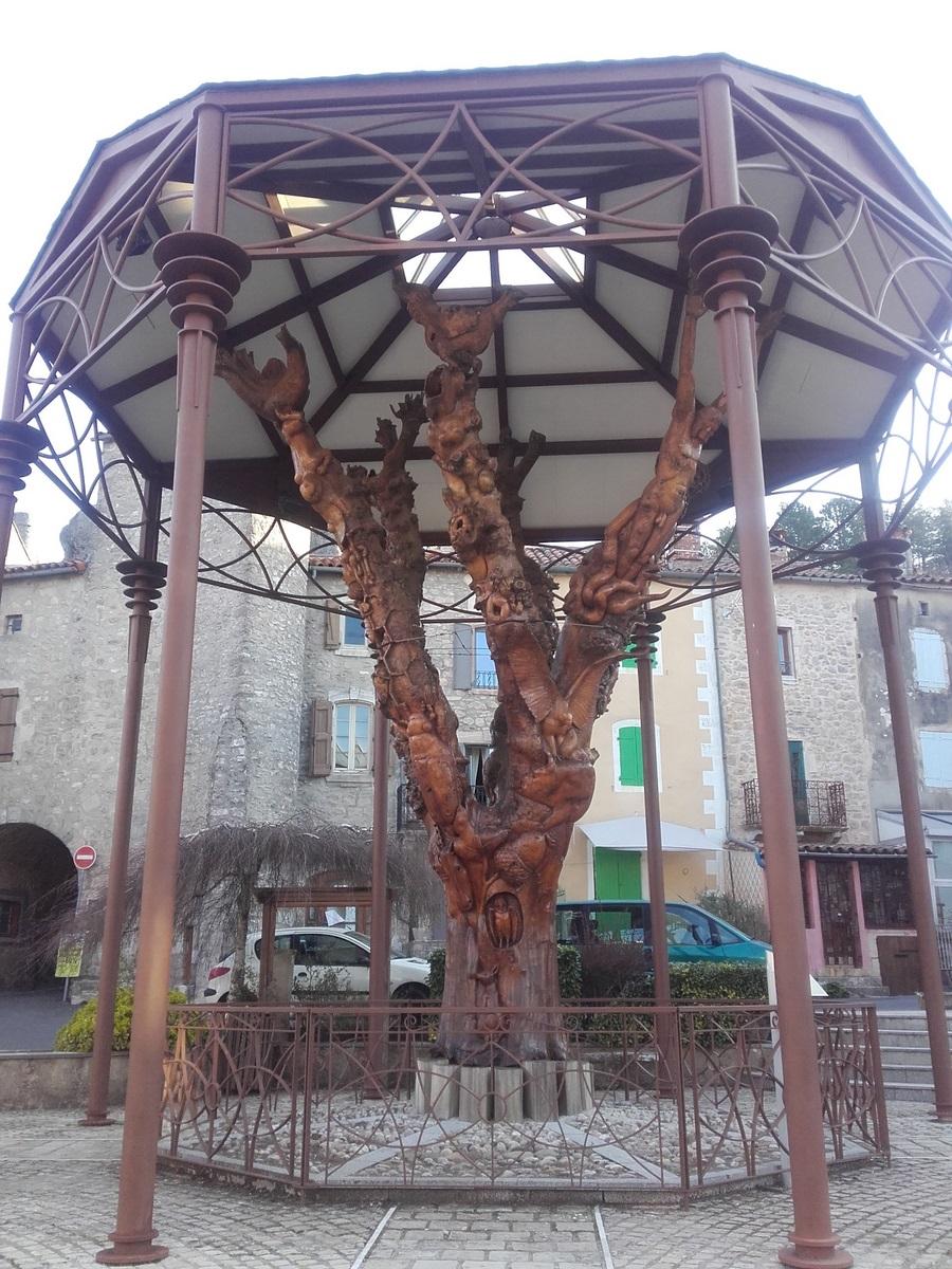 L'arbre du Caylar