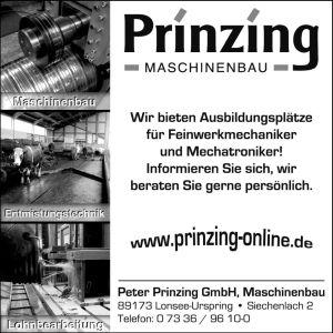 Prinzing Maschinenbau, Urspring