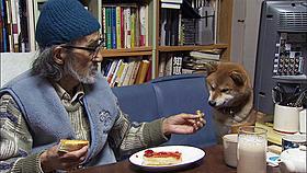 (C) 2012『ニッポンの嘘 報道写真家 福島菊次郎90歳』製作委員会
