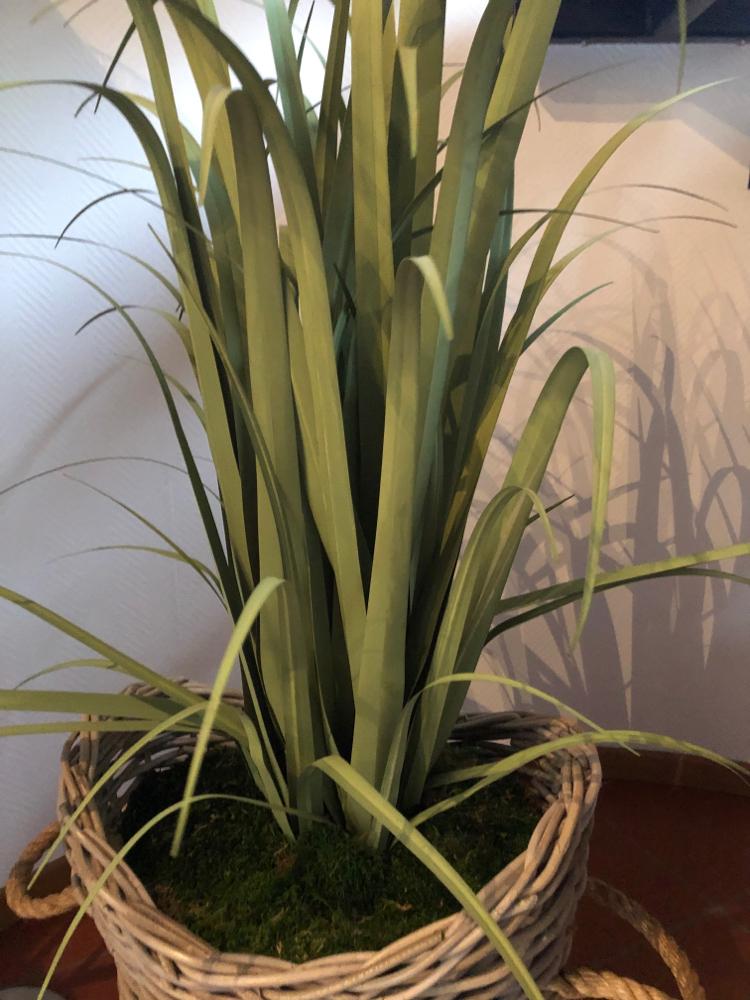Unechtes Gras in verschiedenen Ausführungen und Größen.