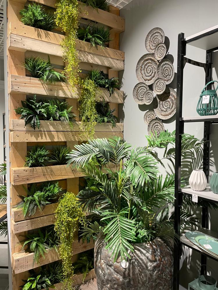 Unechte Pflanzen  in verschiedene  Ausführungen