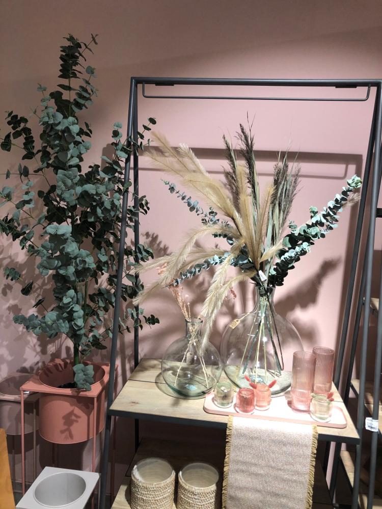 Unechter Euckalythusbaum  ca 120 cm hoch  Euro 185.-  verschiedene Glasvasen zur Auswahl