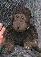 Hat jemand zufällig diesen Affen gesehen?
