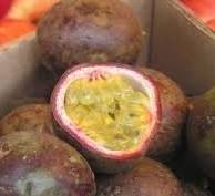 Fruit de la passion - Grenadine