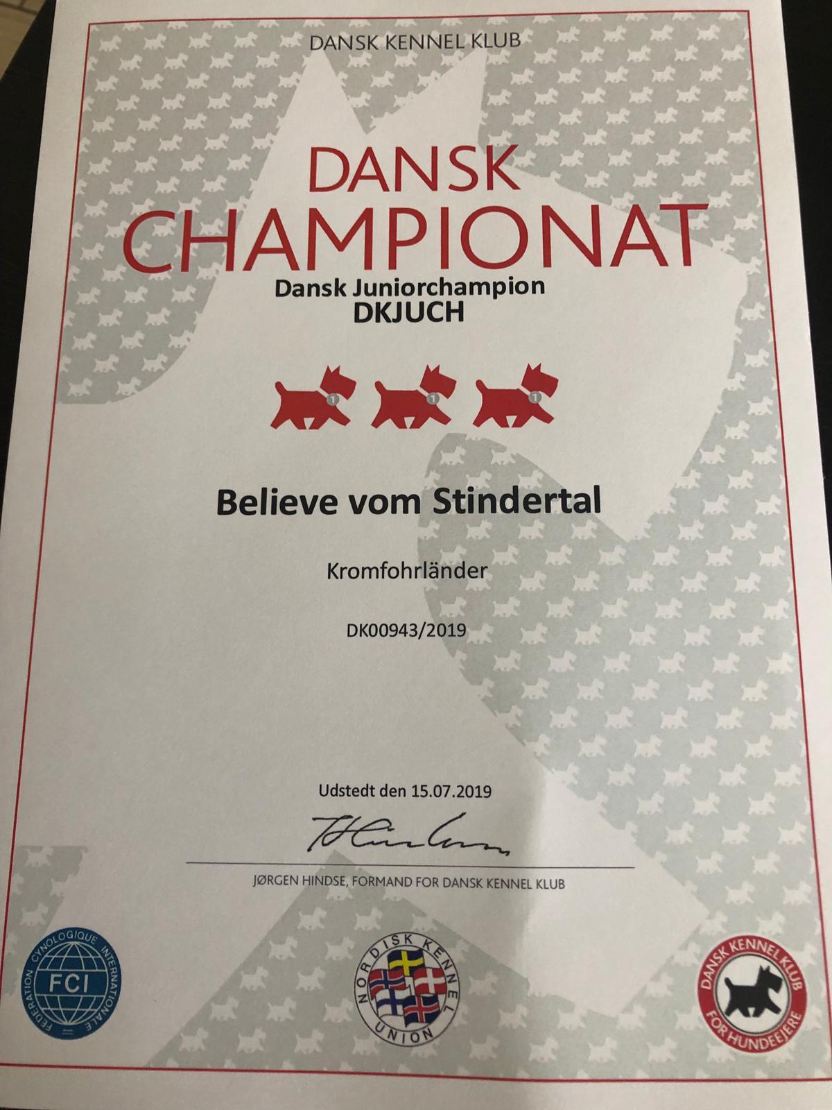 Dansk Junior Champion