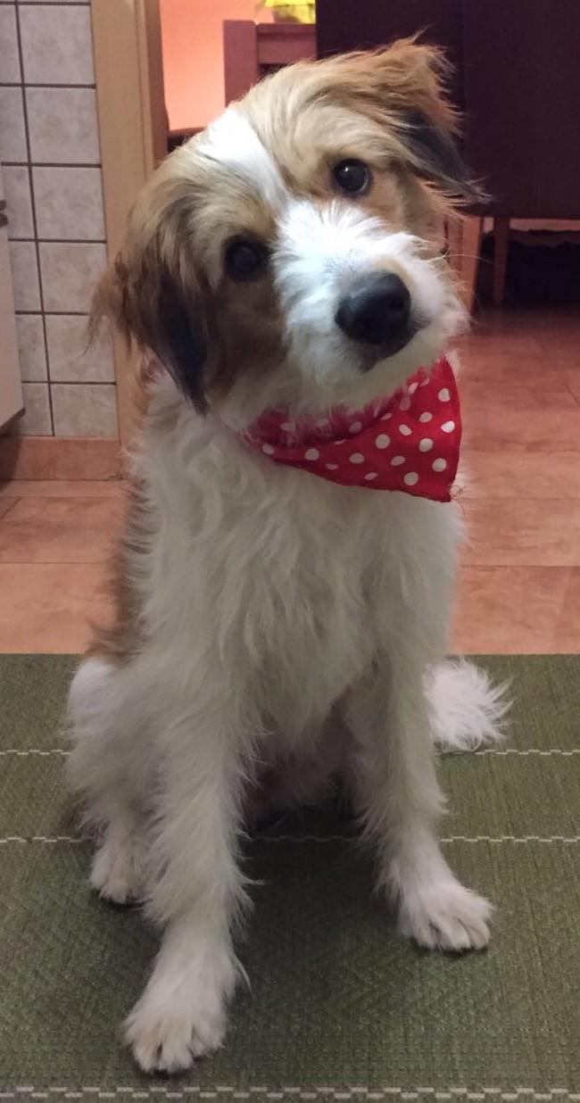 Alina 8,5 Monate
