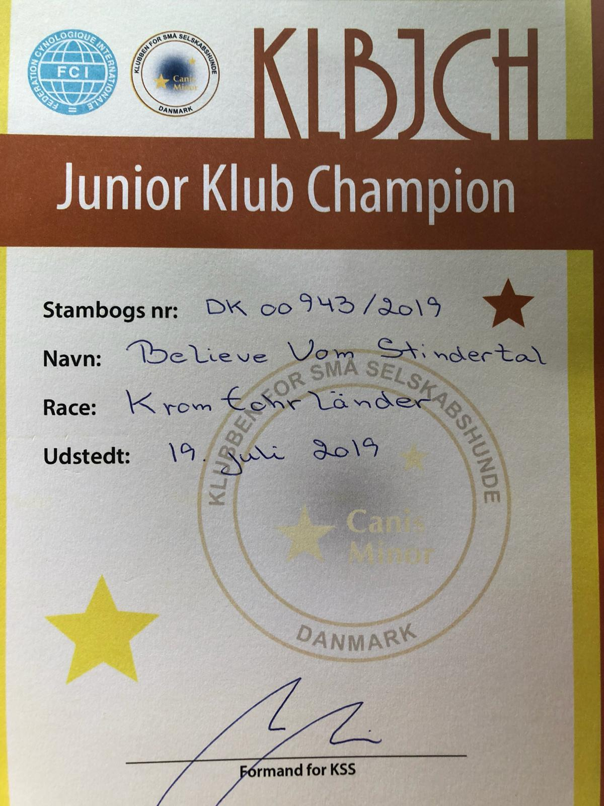Junior Klub Champion