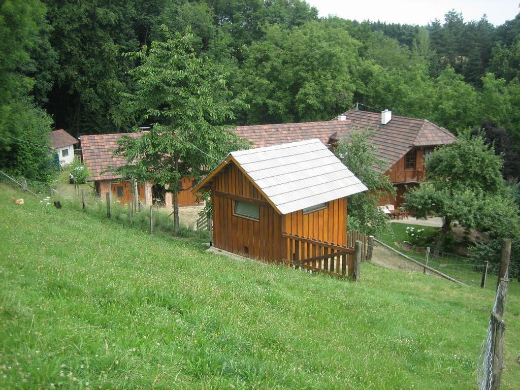 Blick von der Schafweide Richtung Hühnerhaus und Stall