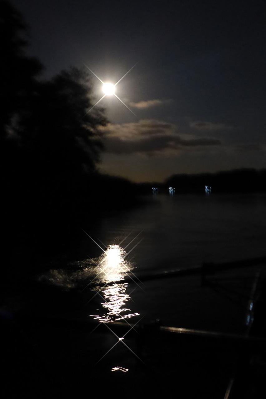 Rudern im Mondschein - einfach schön!!!