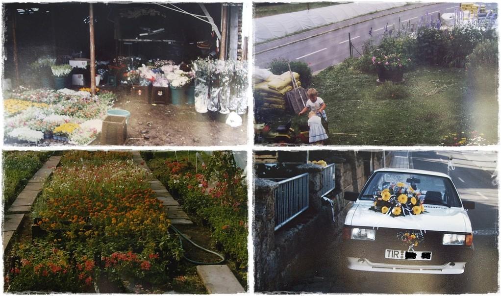 1988 - Blumen aus Holland -- Unsere Floristinmeisterin und ihr Bruder