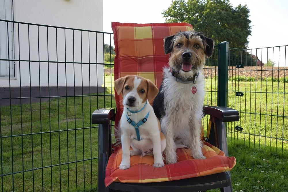 Platz für Beide auf dem Stuhl