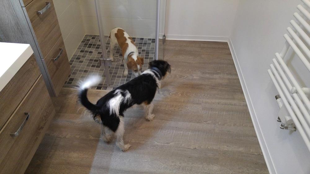 Bardur fragt sich was Digga in der Dusche macht...