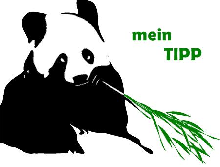 Meine Tipps Bambus Produkte
