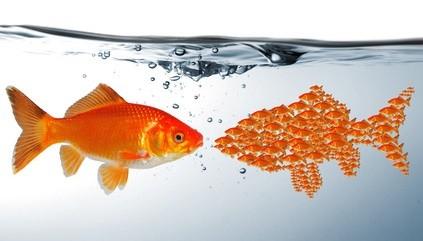 Hintergrundwissen Image, Marktpsychologie, Werbung, Werbepsychologie, Marketing